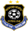 Wexford Youths